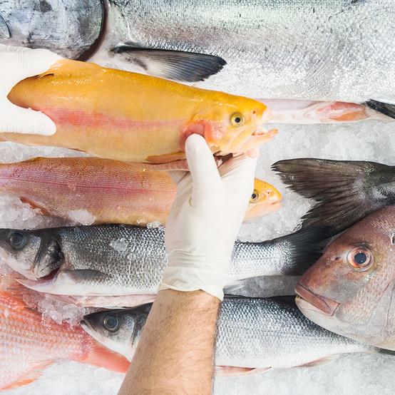 selecting fish