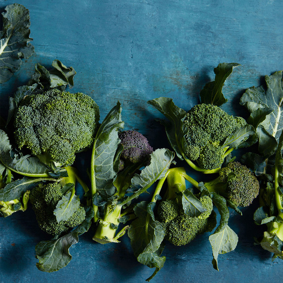 broccoli against a blue background
