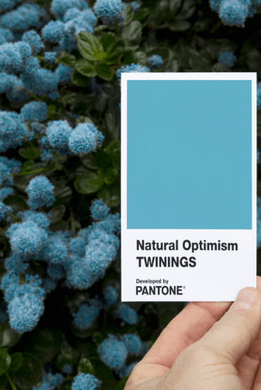 pantone natural optimism