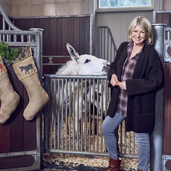 martha in stables with donkey