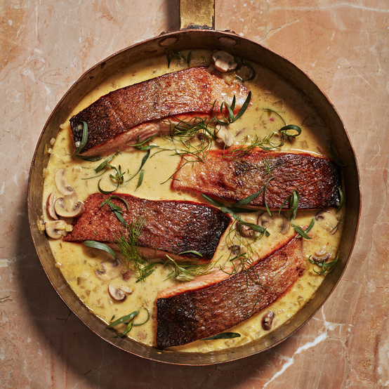 Salmon Fricasse recipe