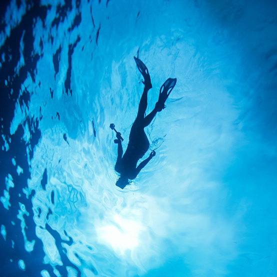 under water vacation snorkling