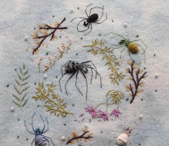 刺绣的蜘蛛