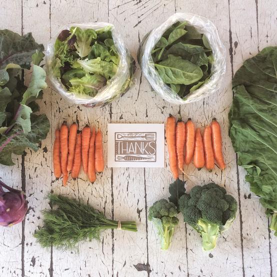 farm crops carrots broccoli cabbage thanks card