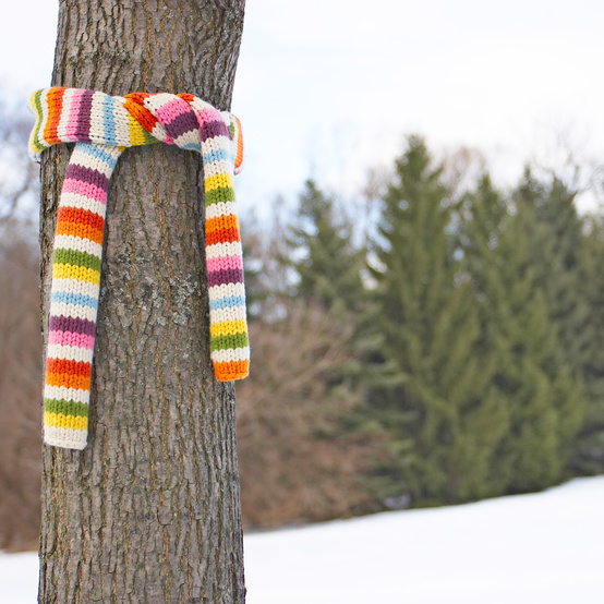 Scarf tied around a tree trunk