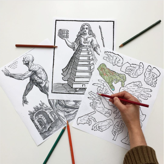 #ColorourCollections Coloring Pages