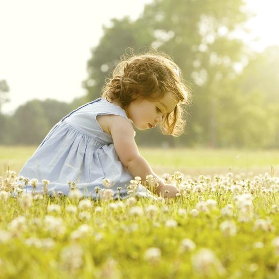 little girl picking flowers in a field
