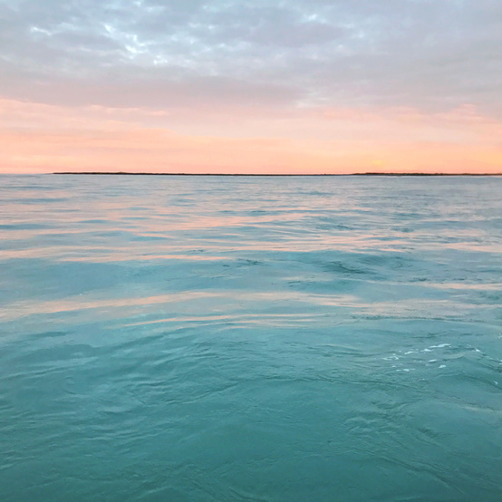 sunrise gulf alaska drfiters fish