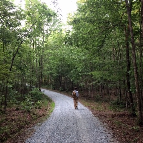 ten mothers farm woods road