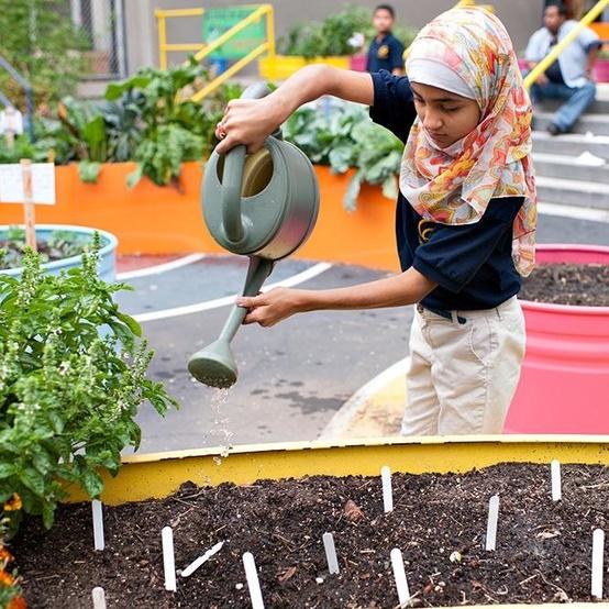 edible school yard nyc