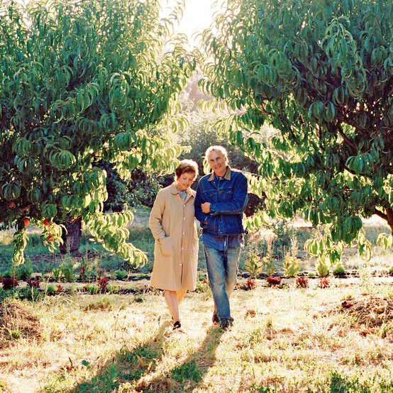 daniel and lipton walking through fruit orchard