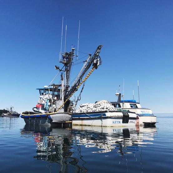 drifter's fish boat