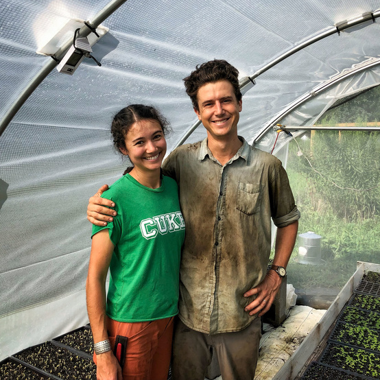 farmers in greenhouse with young plants