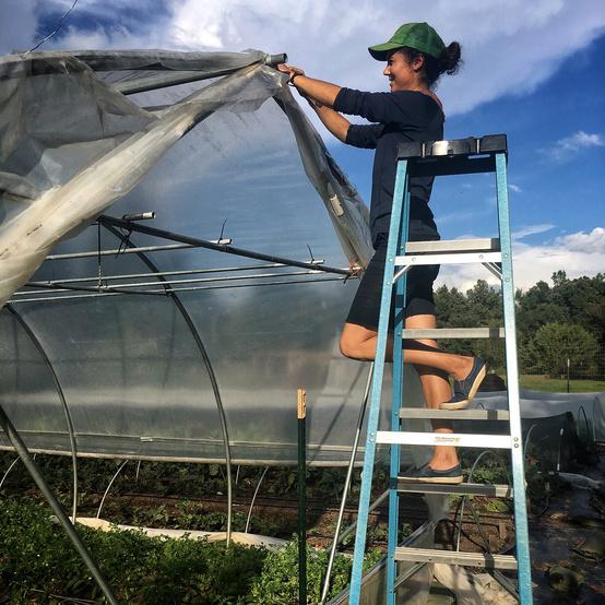 vera preps hoop house before hurricane