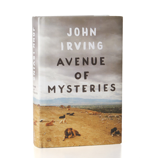 "November Book Club: ""Avenue of Mysteries"""