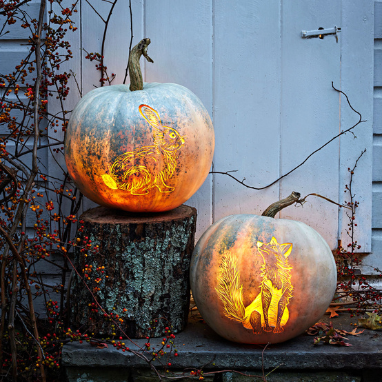 etched woodland animal pumpkins fox rabbit halloween decorations