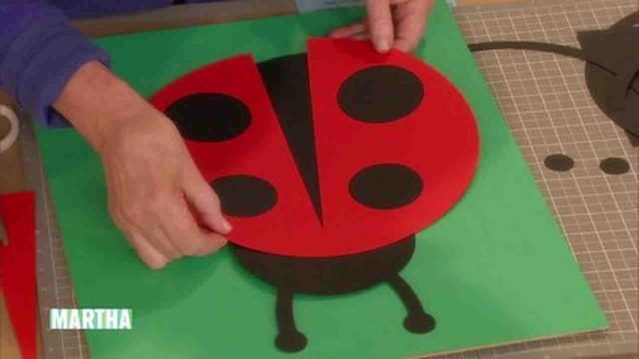 Video Ladybug Artwork
