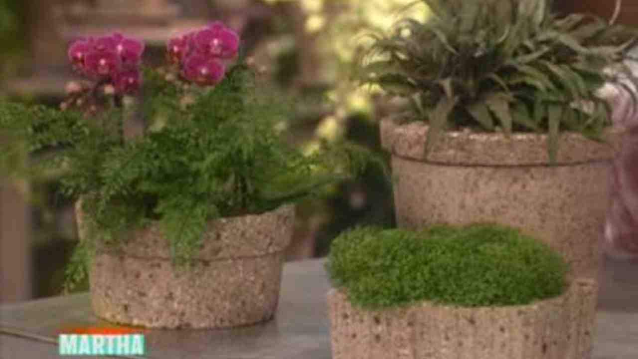 Video: Hypertufa Pots | Martha Stewart on patio pot designs, flower garden designs, indoor garden designs, garden planters designs, dish gardens designs, potted vegetable garden designs, rock gardens designs, herb gardens designs, box gardens designs, pot people designs, stone gardens designs, water garden designs, garden trellis designs, garden gate designs, diy garden designs, pinch pot designs, mosaic pots designs, flower pot designs, container gardens designs, potted plant designs,