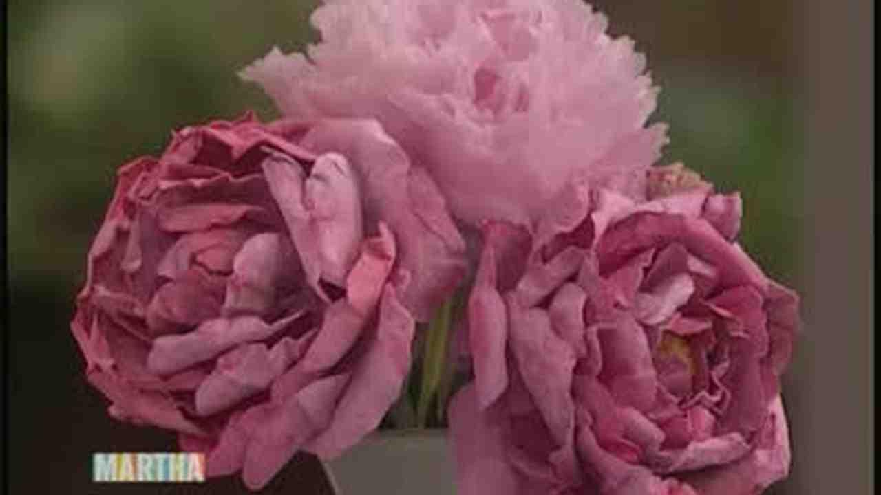 Video Silk Peony Flowers Martha Stewart