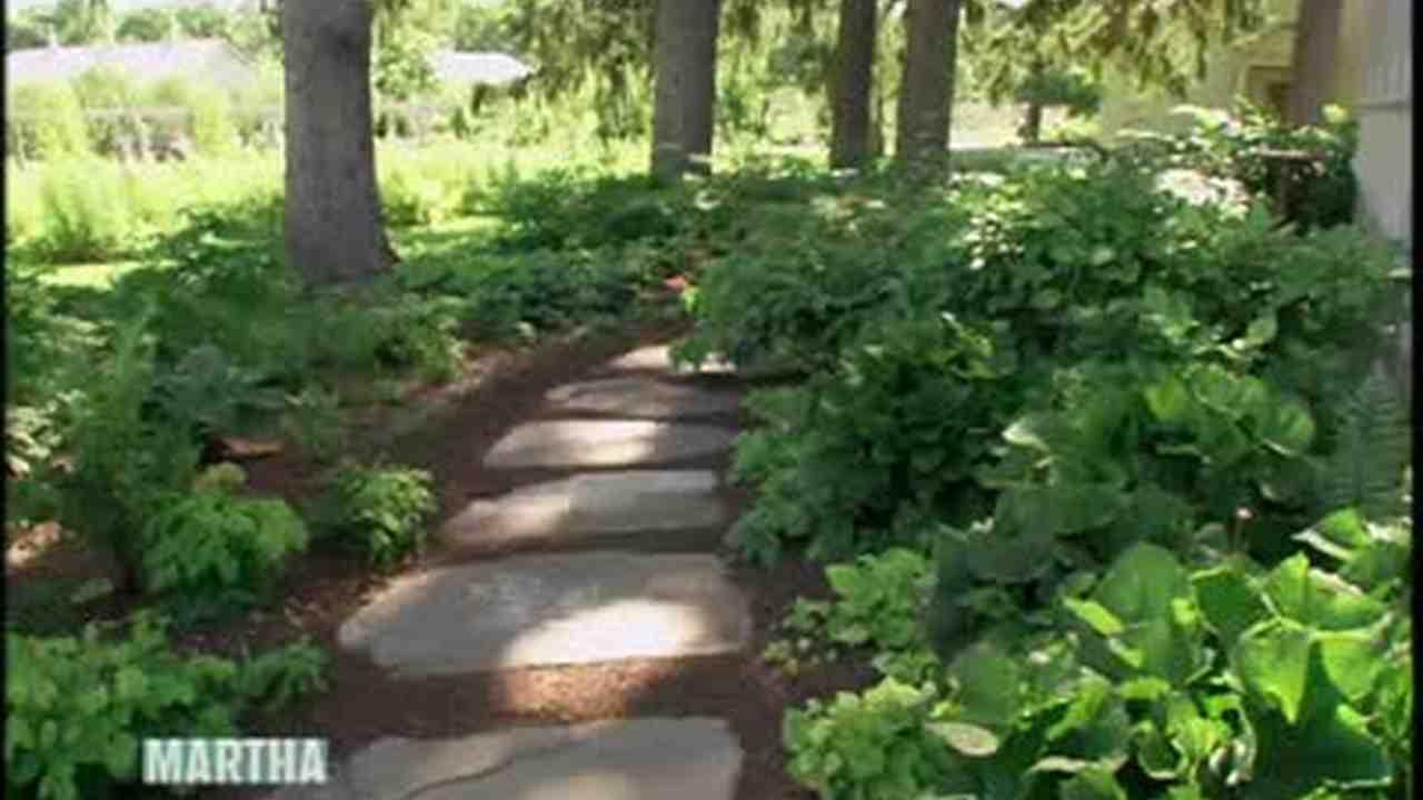 garden shade. Garden Shade Y