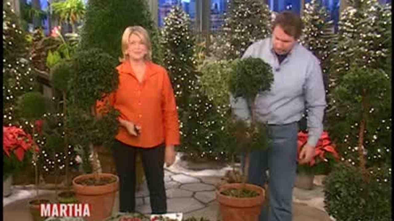 Video: How to Shape a Topiary | Martha Stewart