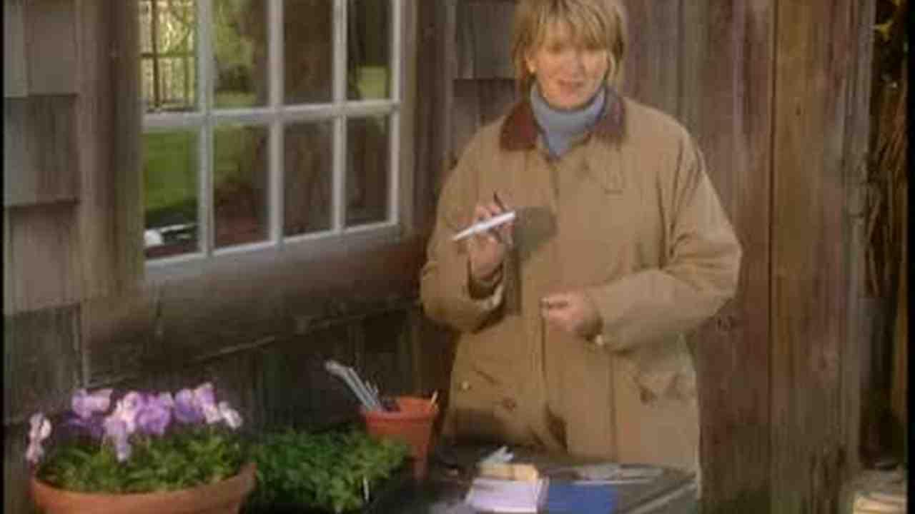 Video: Garden Labels and Markers   Martha Stewart