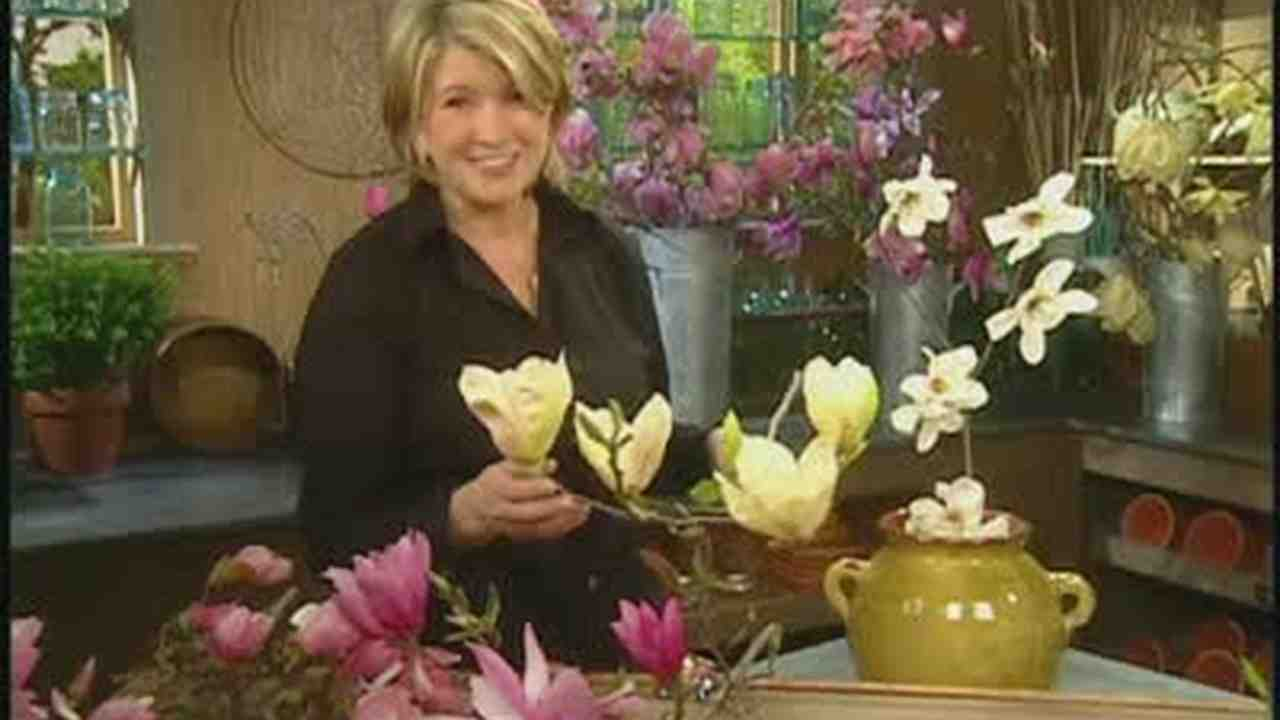 Video: All About Magnolia Flowers | Martha Stewart