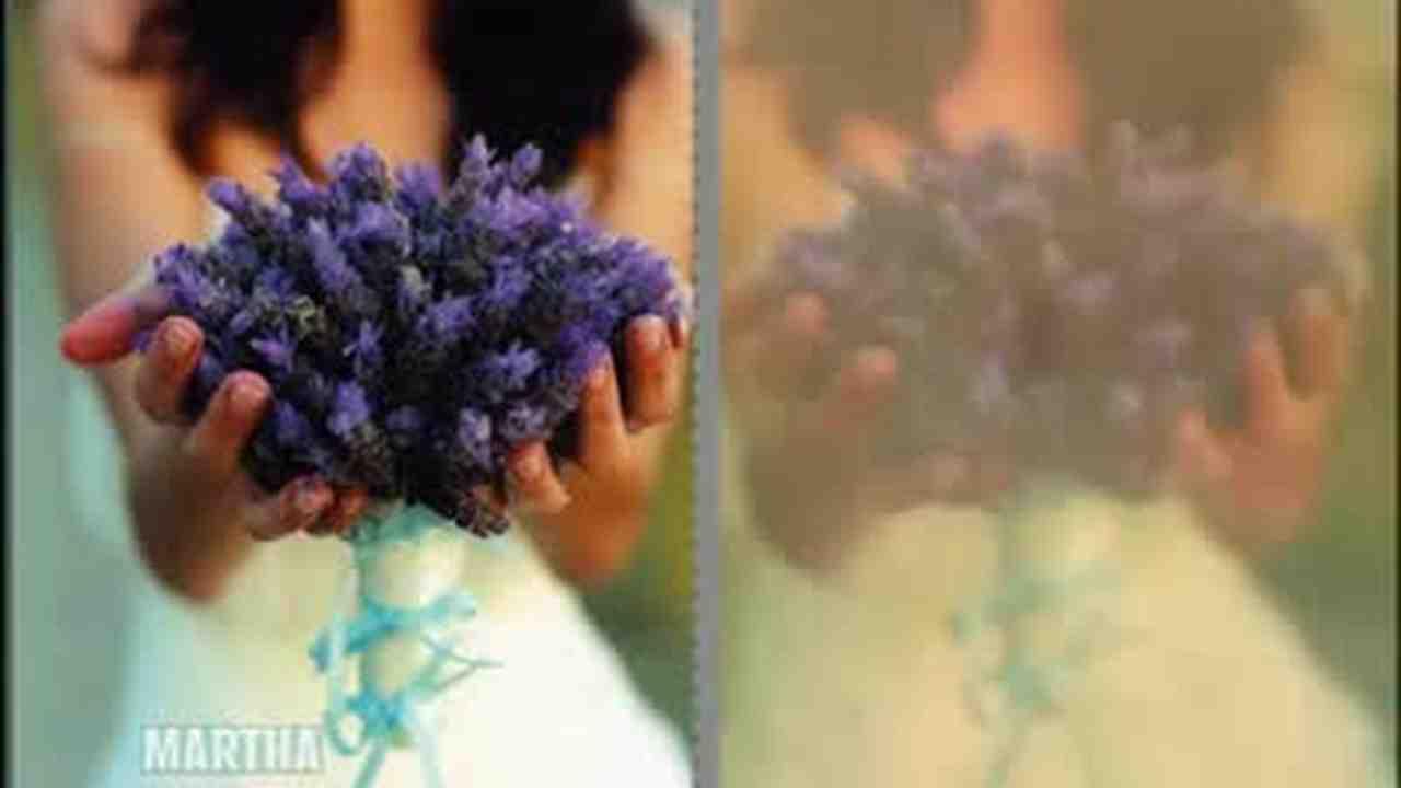 Video wax flower arrangements part 1 martha stewart now playing izmirmasajfo