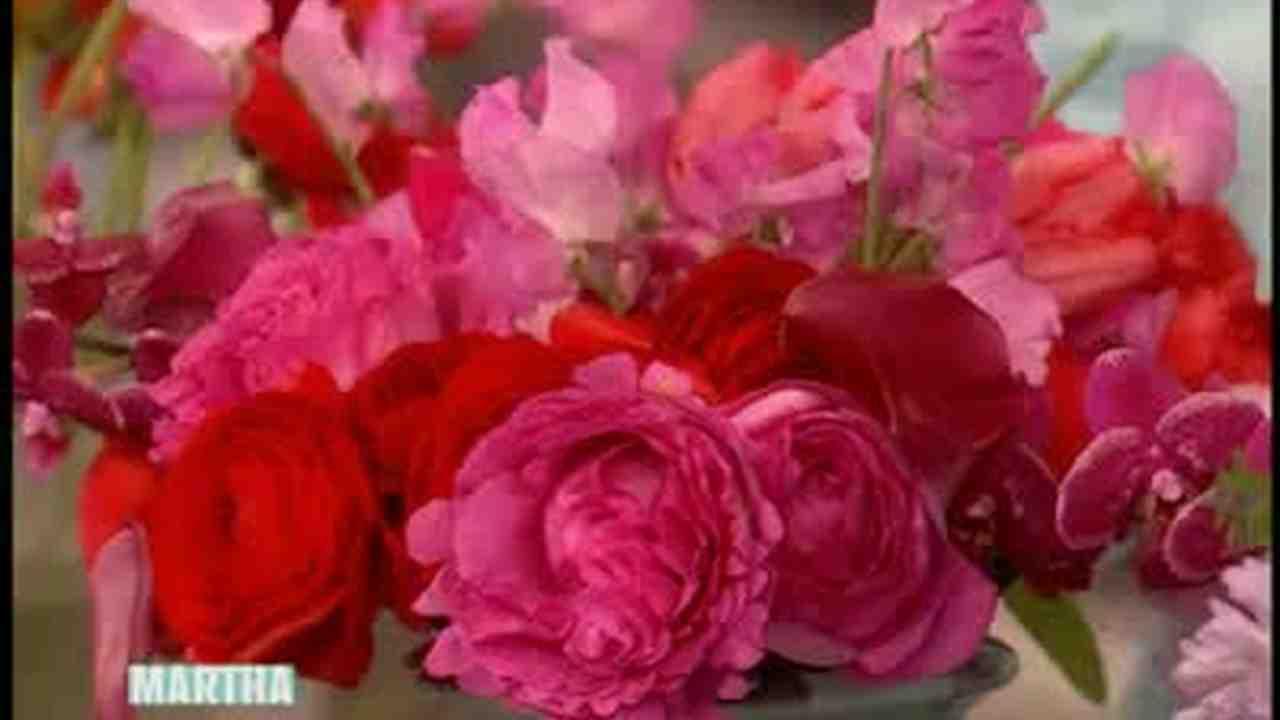 Video: Colorful Floral Arrangements | Martha Stewart