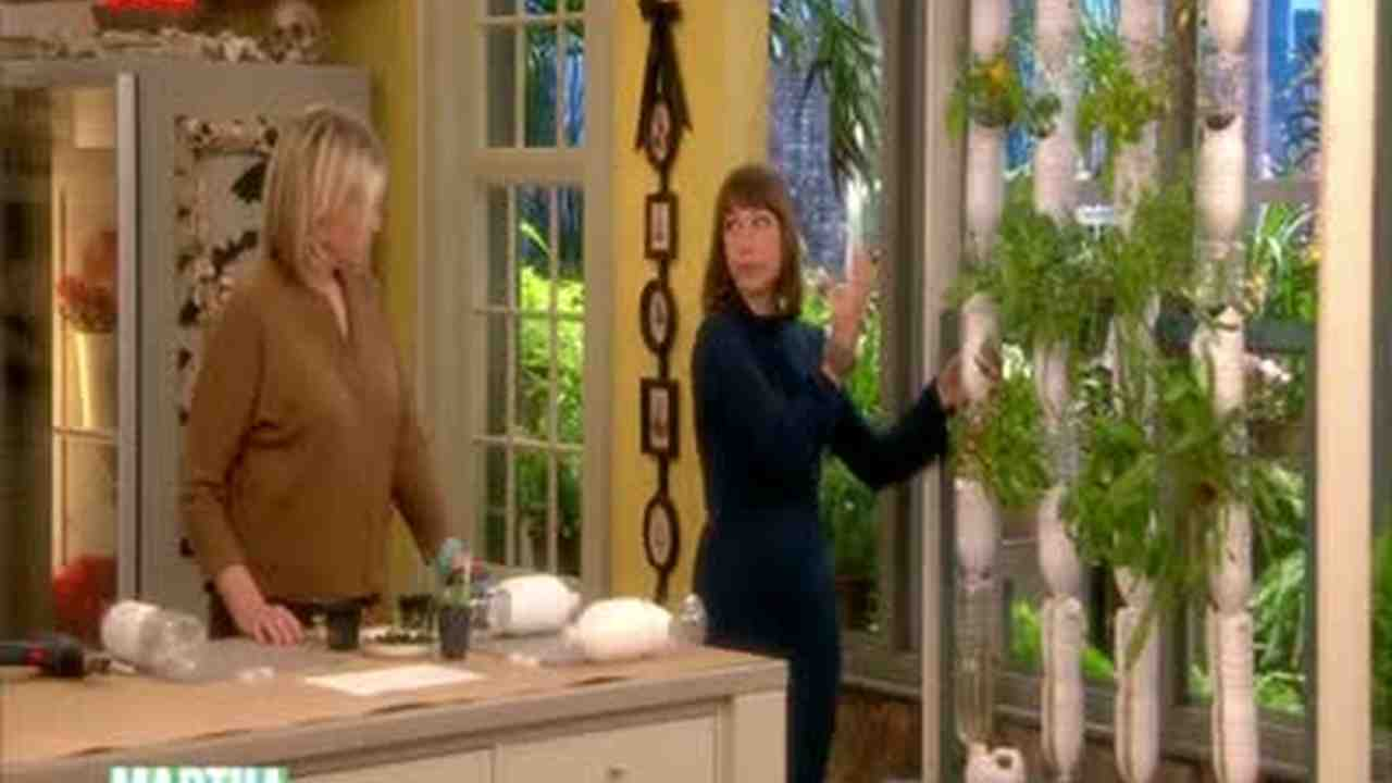 Video: How to Grow a Hydroponic Garden | Martha Stewart