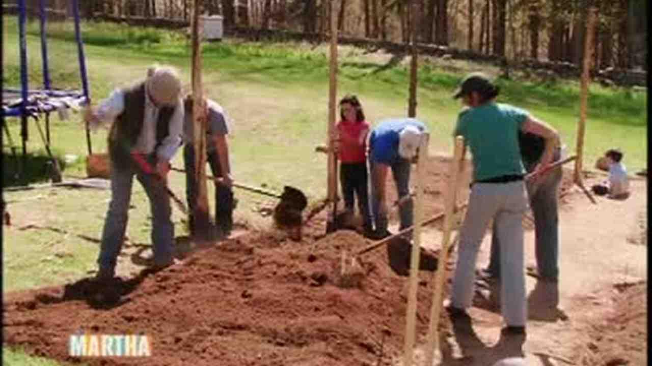 Video: How to Set Up a Vegetable Garden | Martha Stewart