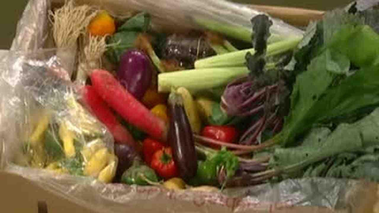 Video: A Visit to Chef\'s Garden in Huron, Ohio   Martha Stewart