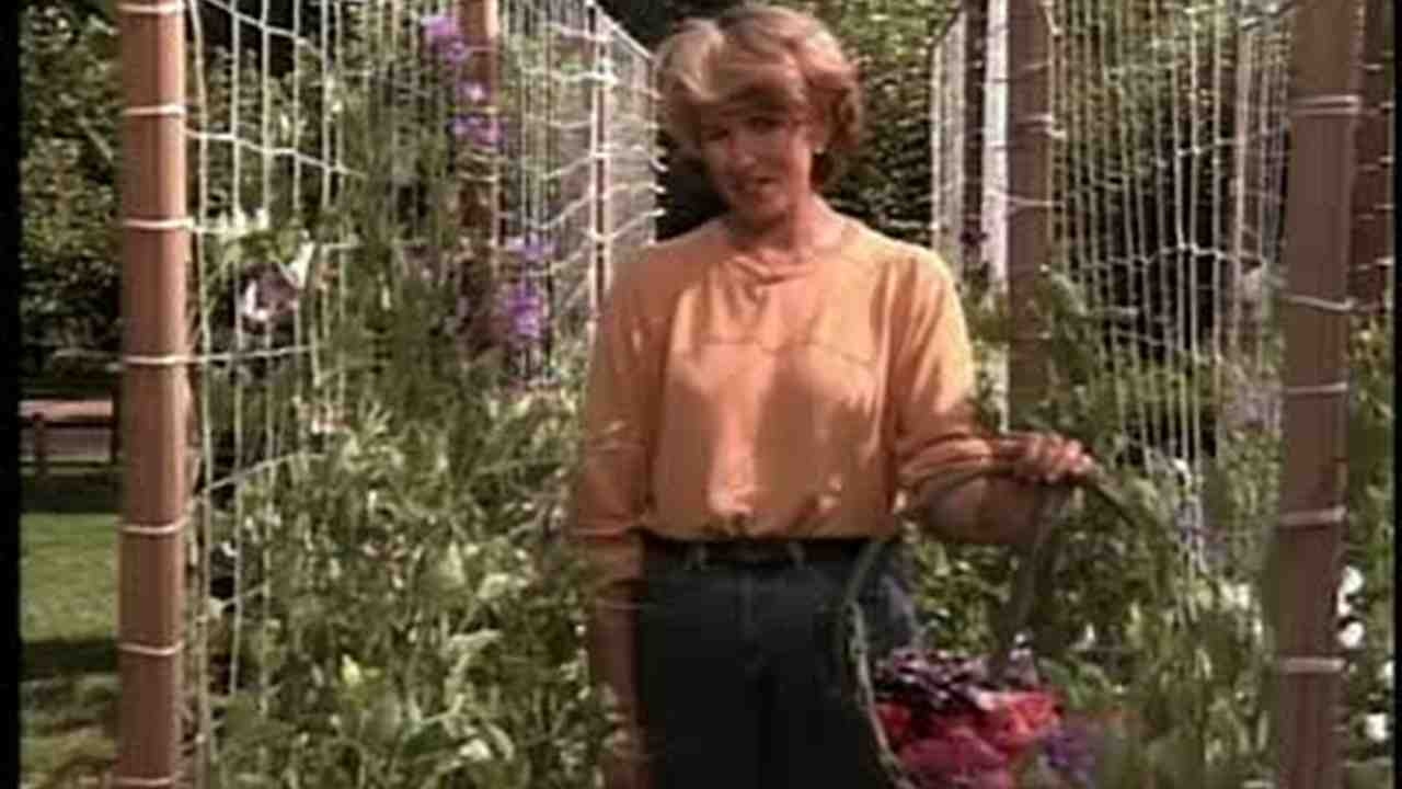 Sweet Pea Trellis Ideas Part - 16: Martha Stewart