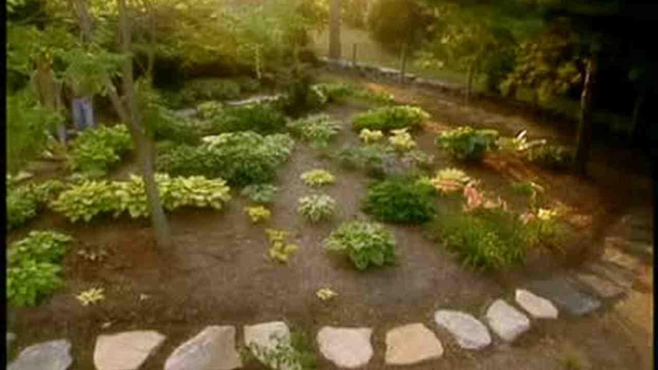 Martha Visits A Gorgeous Hosta Garden