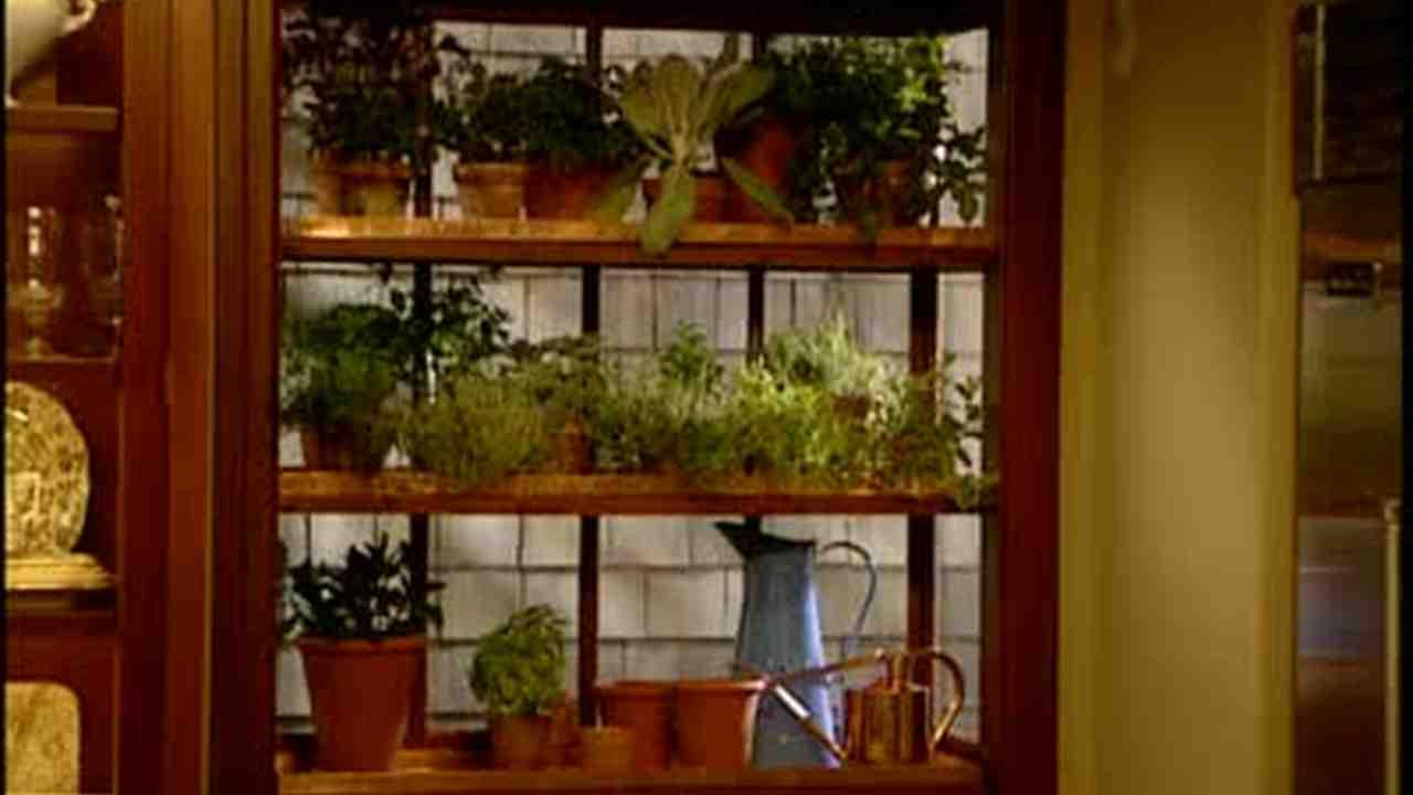 Video: How to Make a Window Greenhouse Garden | Martha Stewart