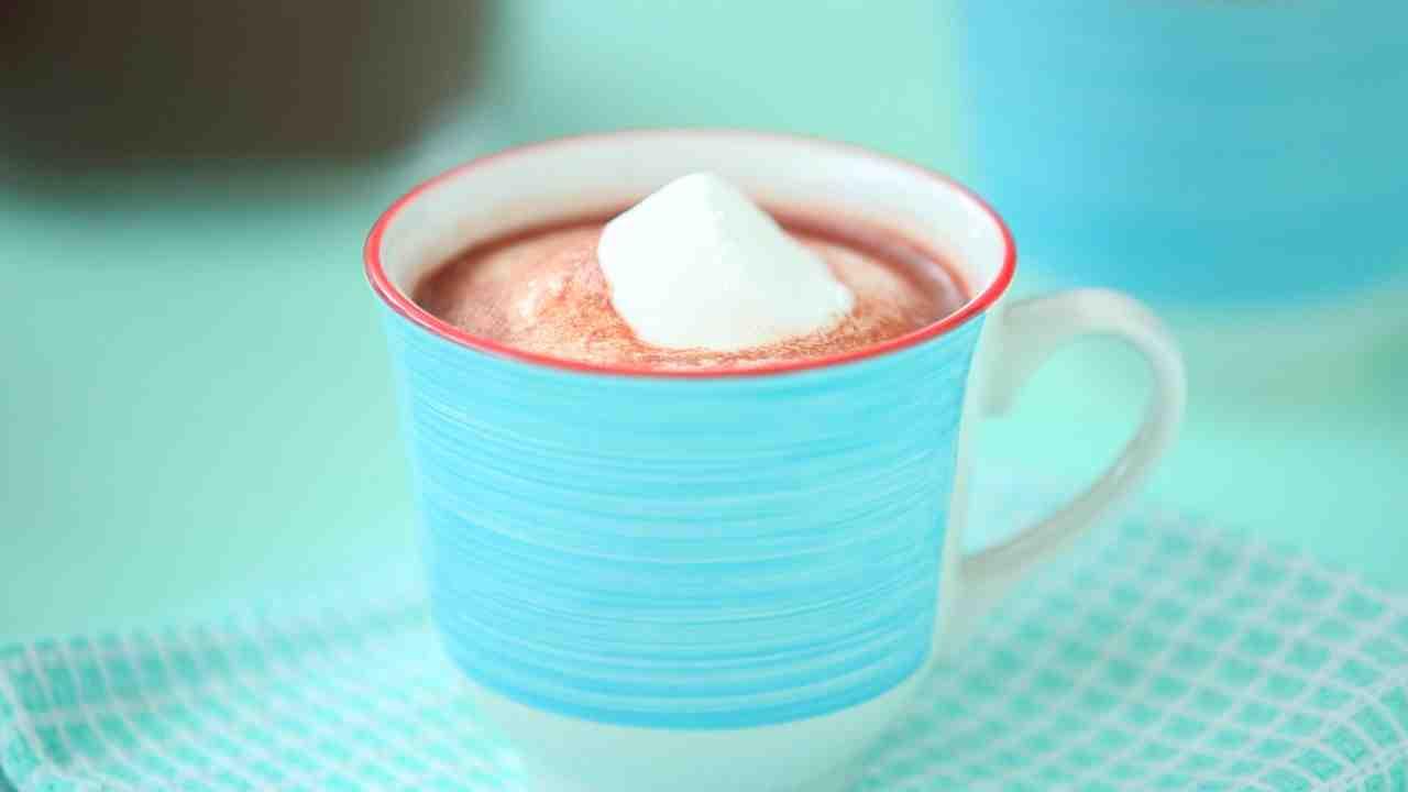 Homemade Hot Chocolate Shake N Take 3 2 Cup