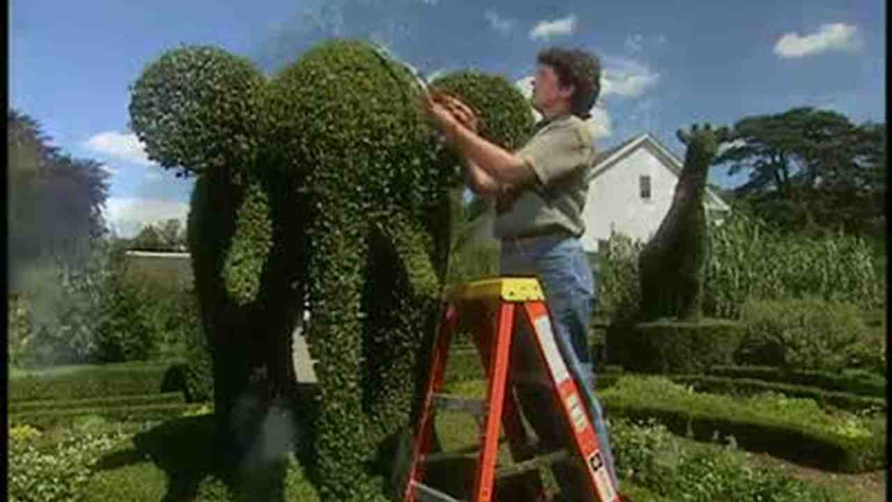 video a visit to green animals topiary garden martha stewart - Green Animals Topiary Garden