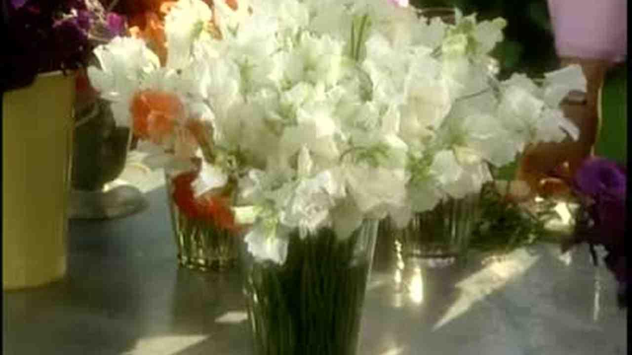 Video how to make gladiolus flower arrangements martha stewart now playing izmirmasajfo