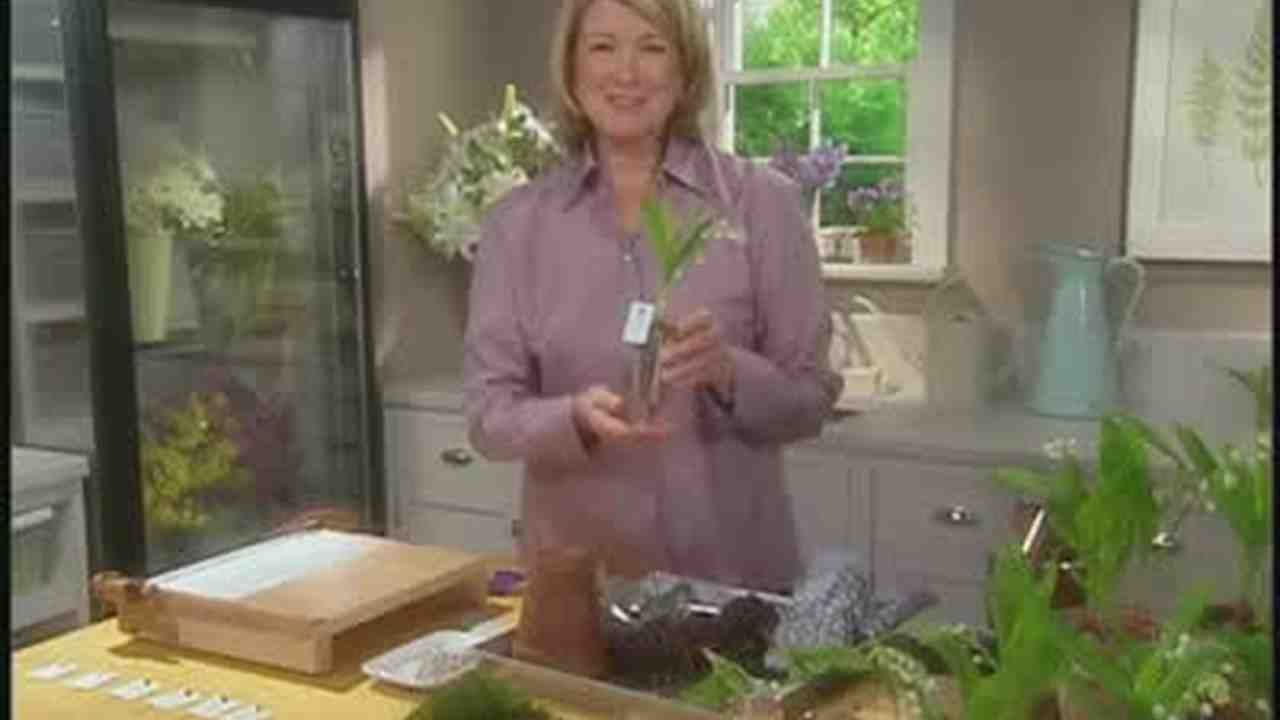 Video Planting Lilly Of The Valley Wedding Favors Martha Stewart