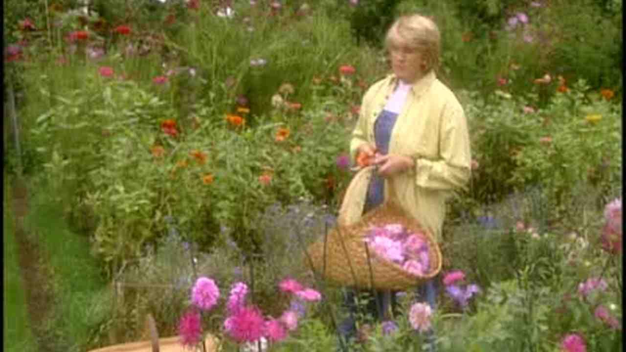 Delightful Martha Stewart
