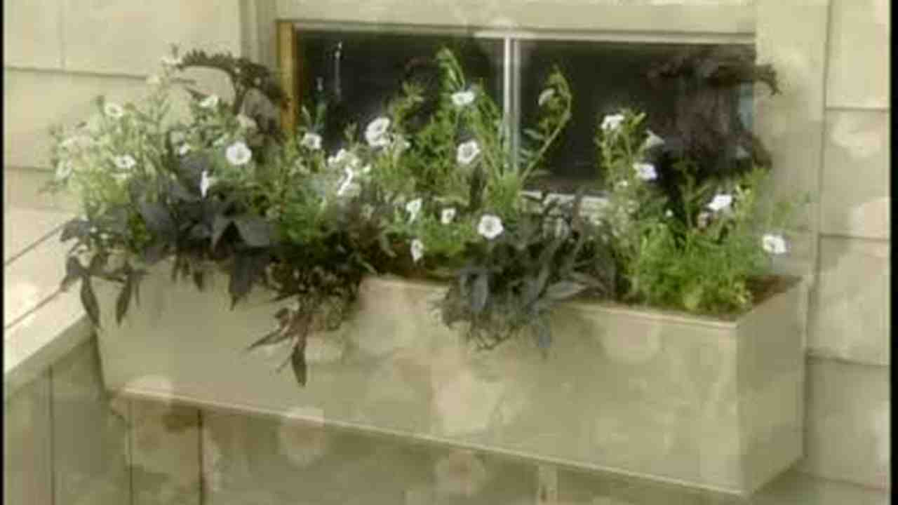 how to plant a window box video how to plant flowers in well made window box martha stewart