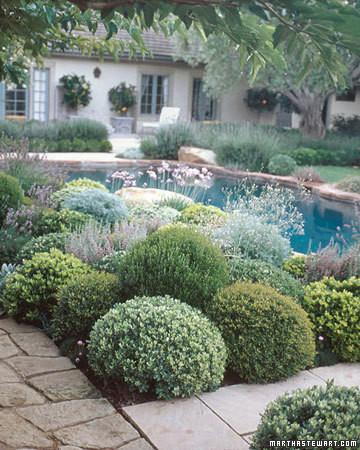 Garden Design 101 Martha Stewart