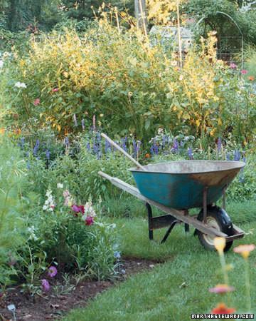 12 Essential Spring Gardening Tips