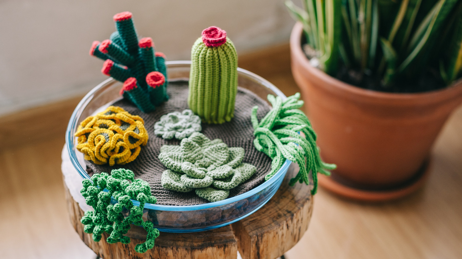 How to Crochet a Terrarium (Including 7 Different Succulents)