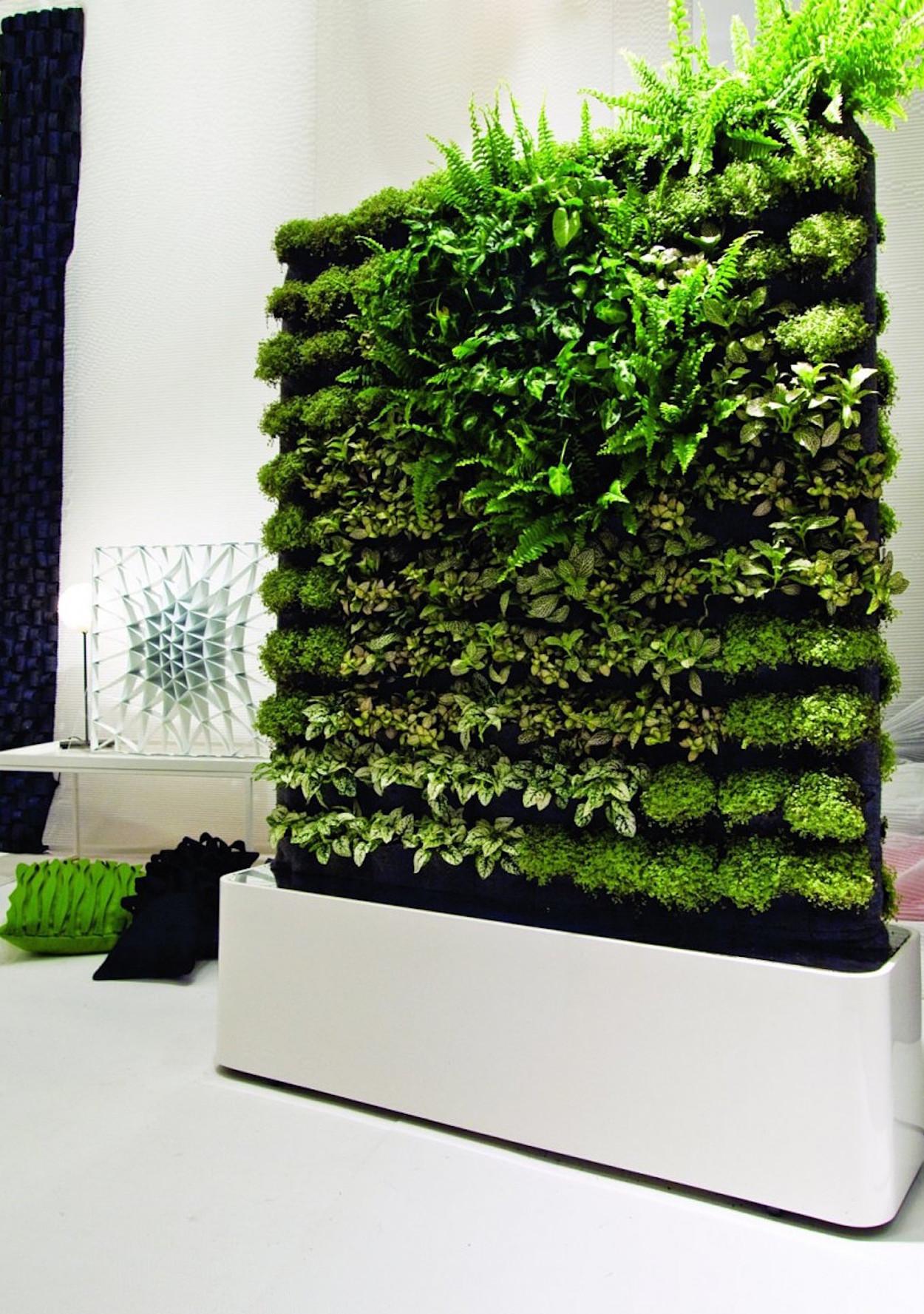 & Moss Wall Art Isnu0027t Just Pretty Itu0027s Good for You Too | Martha Stewart