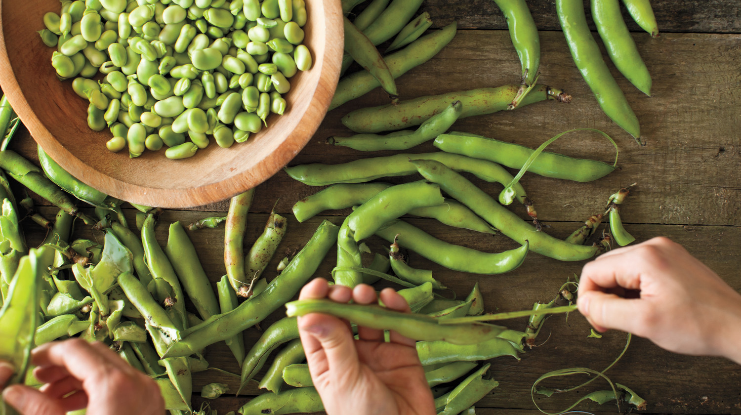 15 Fava Bean Recipes You Need to Try This Spring | Martha ...