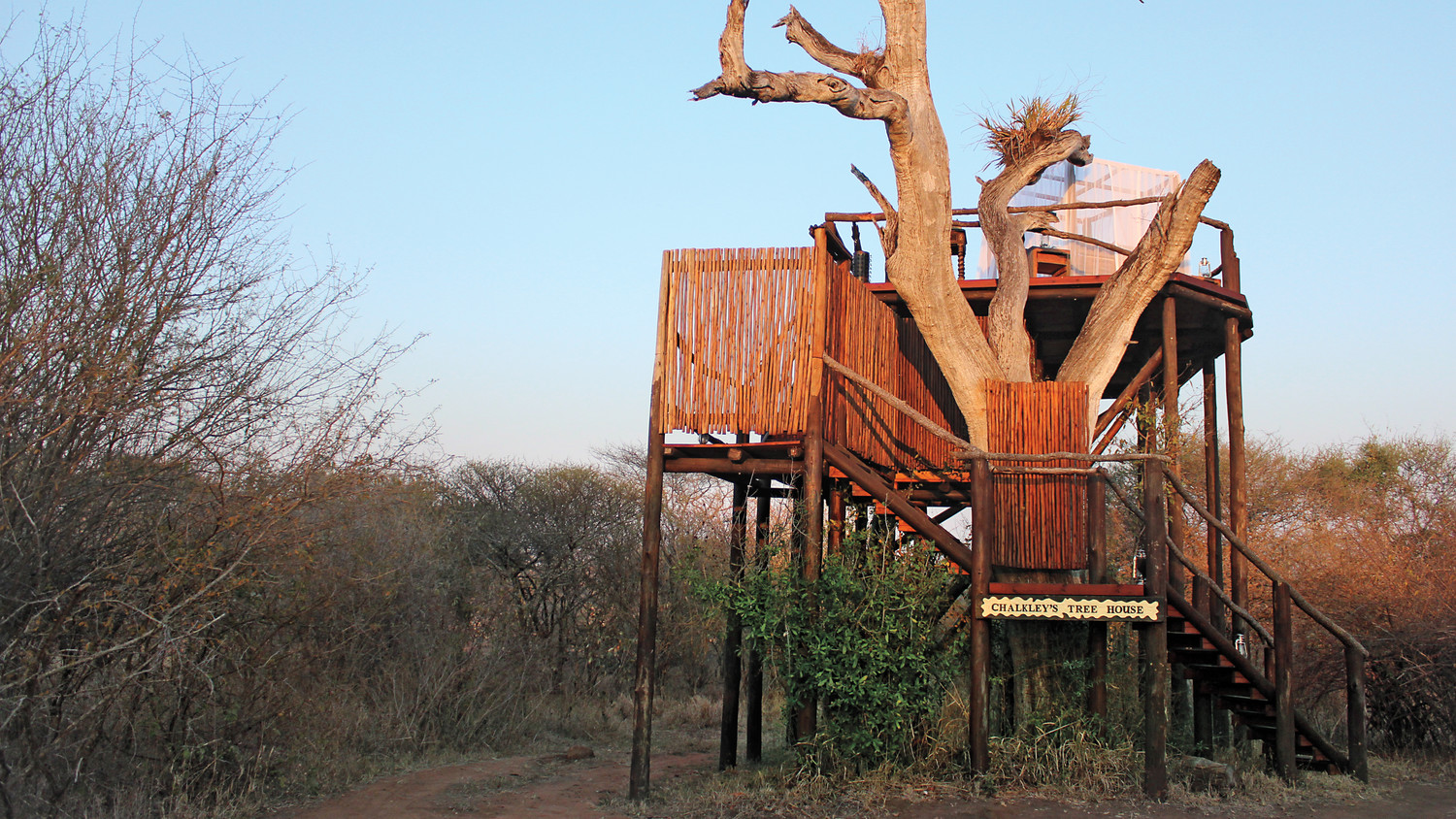how to build a treehouse like a pro no matter what size your yard