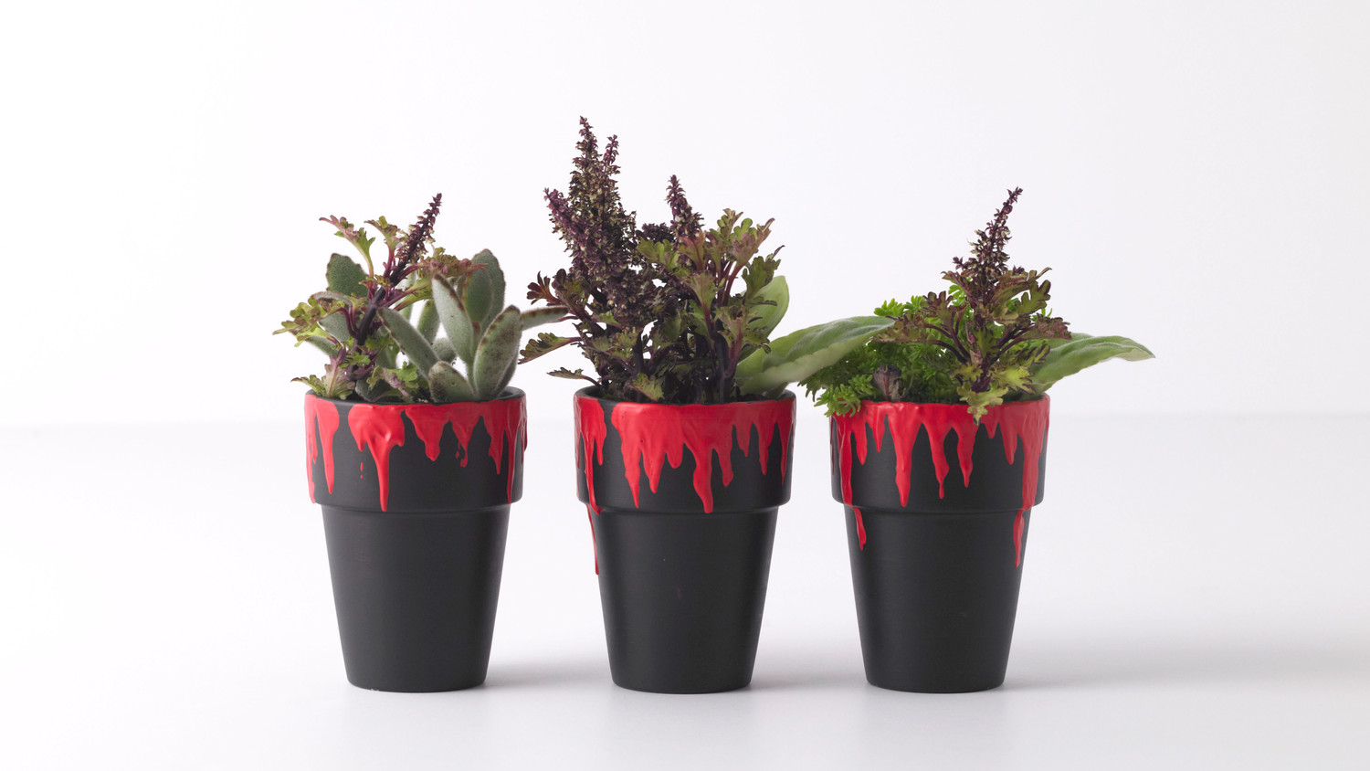 Blood-Drip Planters