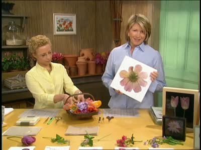 Video How To Press Flowers Martha Stewart