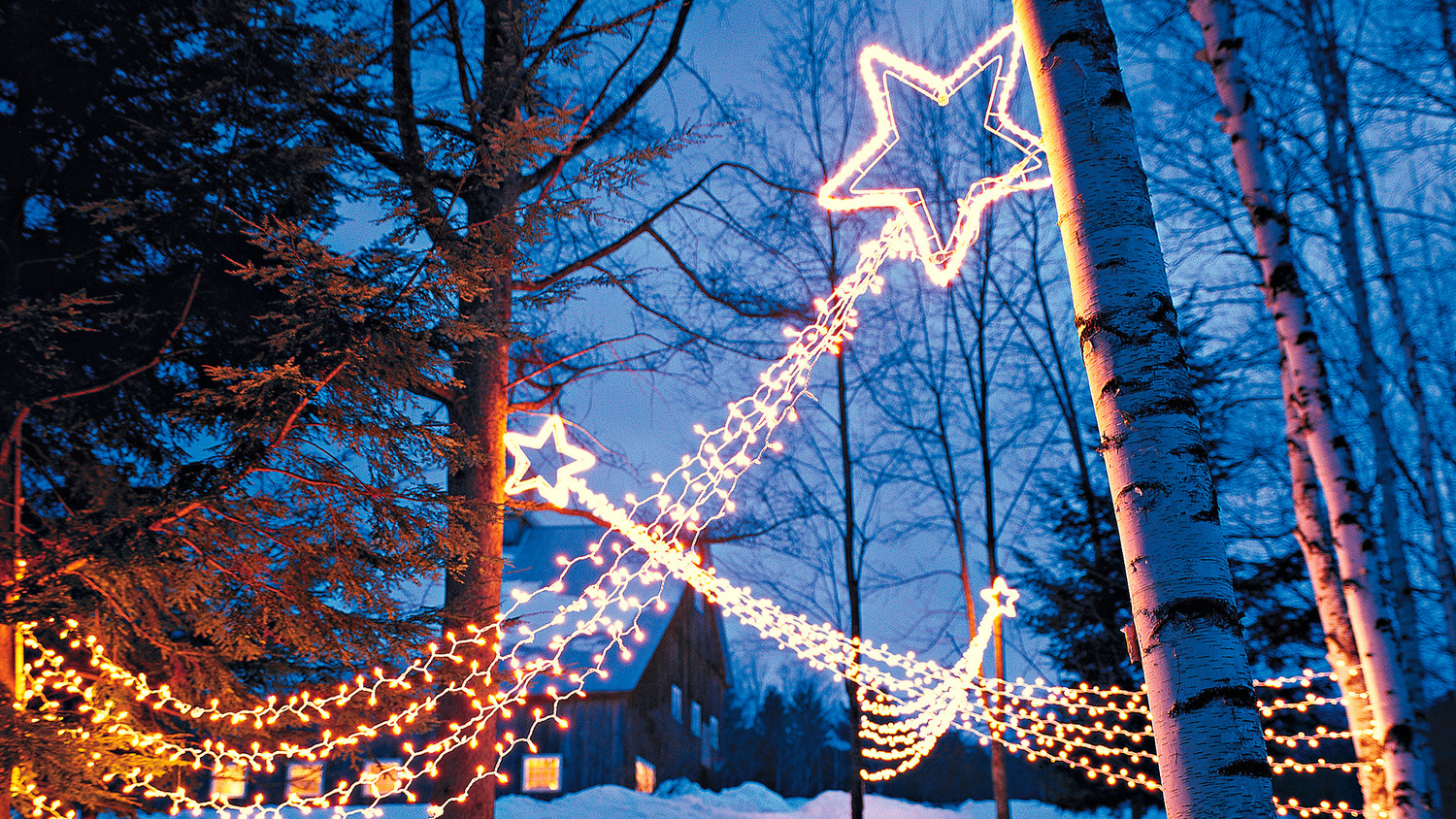 shooting star outdoor lights martha stewart